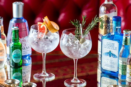 Gin Tasting in Cheshire